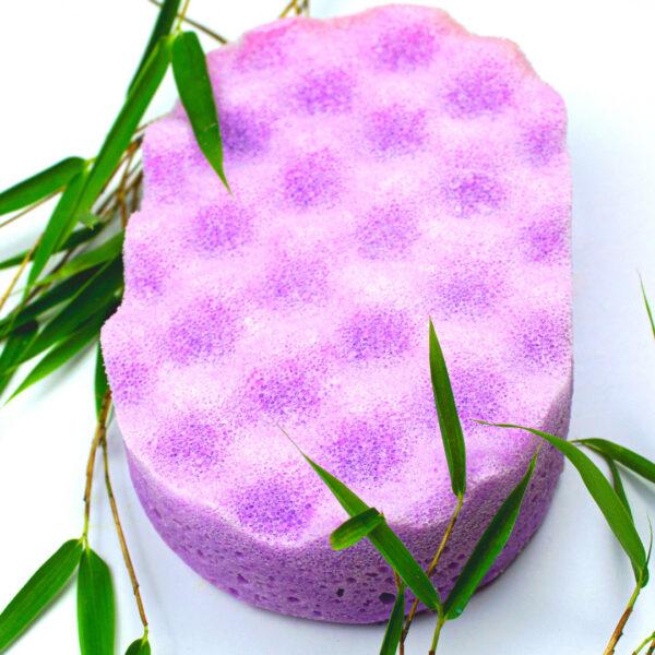 soap sponges