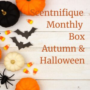wax melt monthly box